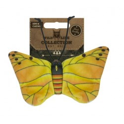 Wild Life Cat Yellow Butterfly