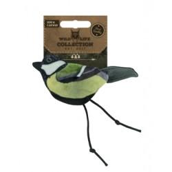 Wild Life Cat Robin
