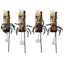 AFP Naturel Spider Web - Wędka dla kota