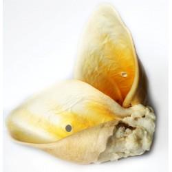 Balto Ucho wołowe białe