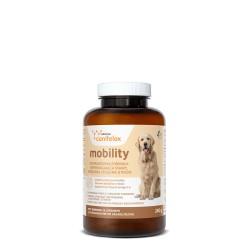 Canifelox Mobility Stawy 60 tabletek