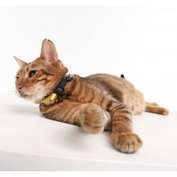TICKLESS Ultradźw. odstraszacz kleszczy mini kot