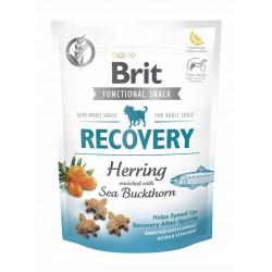 BRIT CARE dog snack recovery 150g śledź