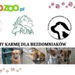 dla bezdomniakow •zoologiczny