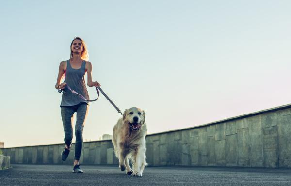 Pronature Life Dog Moove Active+ dla psów aktywnych i pracujących