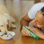 INABA karmy i przysmaki dla psów i kotów.