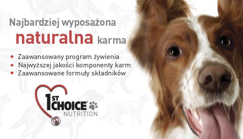 Kanadyjskie karmy dla psa 1st Choice